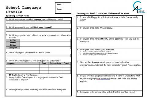 Do you create a School Language Profile?